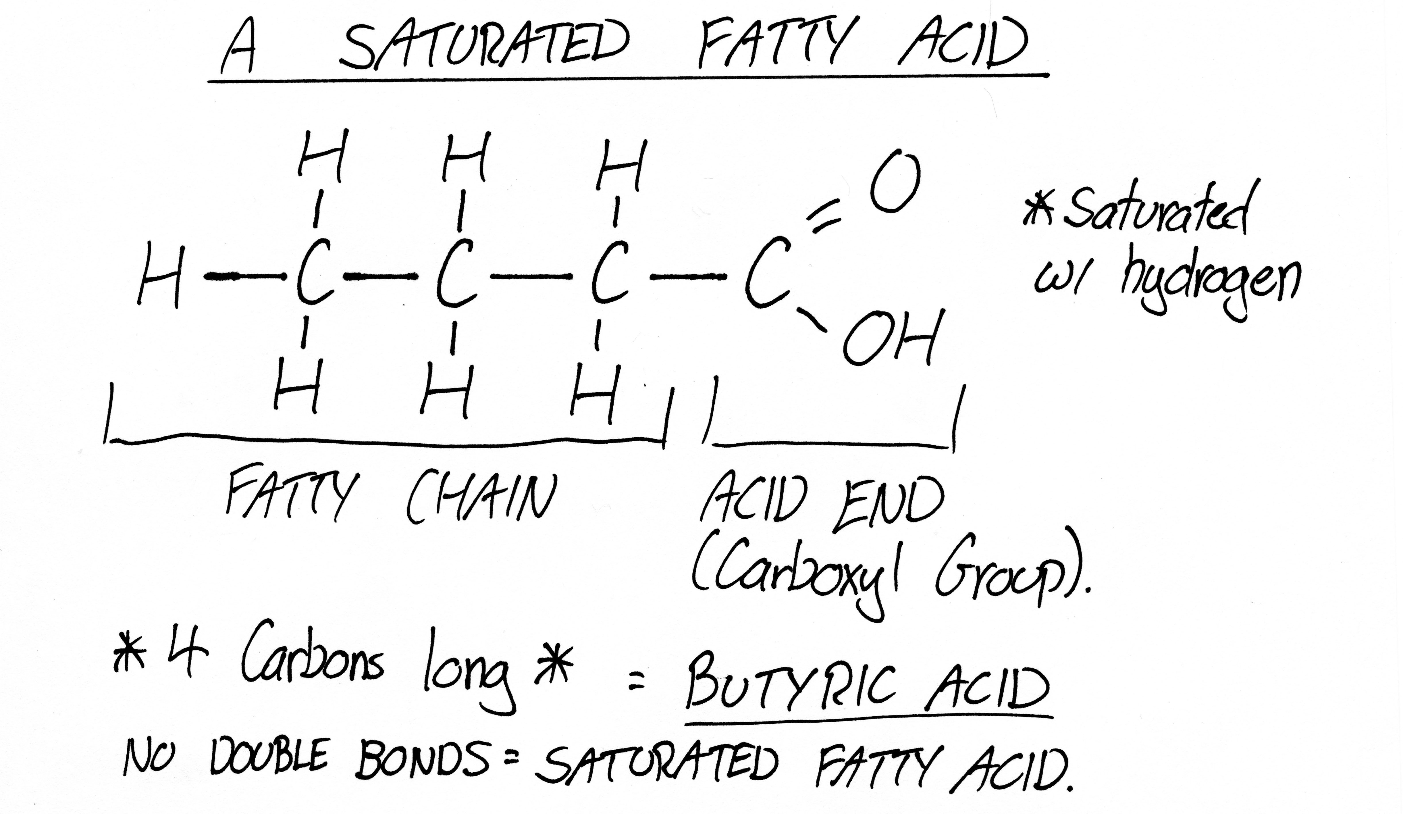 the importance of dietary fats pg wellness : fatty acid diagram - findchart.co